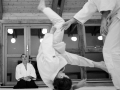 stb_aikido-1.jpg