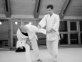 stb_aikido-2.jpg