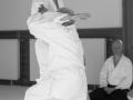 Aikido_07_2016-3