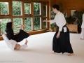Aikido_fB-3.jpg